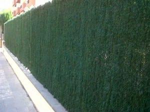 Montaje vallas ocultación que no dejan ver brezo sintetic