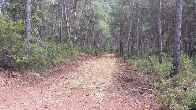 Camino de acceso al cerramiento finca
